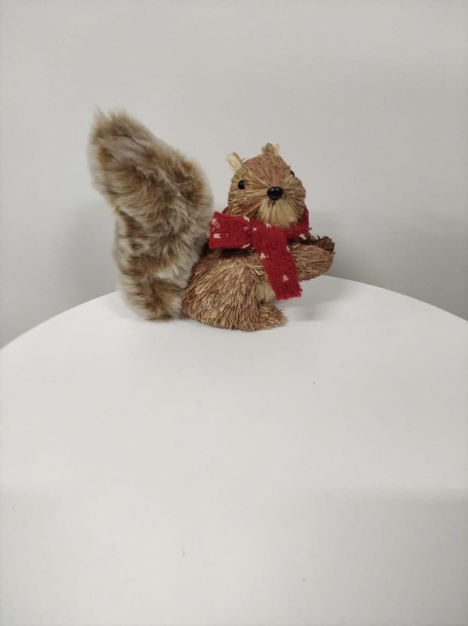 Esquilo cachecol P